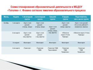 Схема планирования образовательной деятельности в МБДОУ «Тополек» г. Фокино с