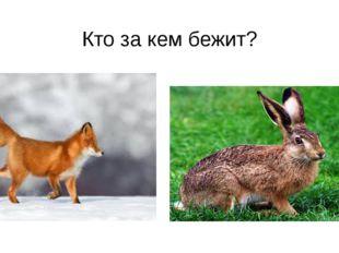 Кто за кем бежит?