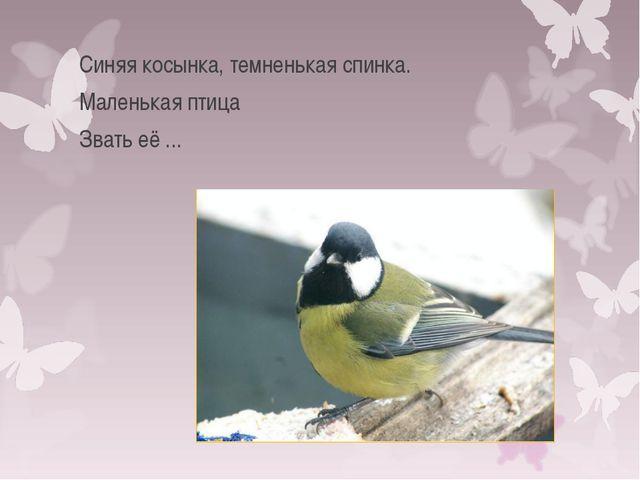 Синяя косынка, темненькая спинка. Маленькая птица Звать её ...