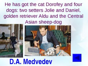 D.A. Medvedev He has got the cat Dorofey and four dogs: two setters Jolie and