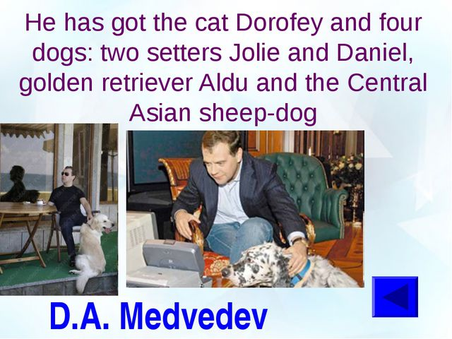 D.A. Medvedev He has got the cat Dorofey and four dogs: two setters Jolie and...