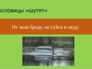 Пословицы «шутят» Не зная броду, не суйся в воду. Не зная броду, не суйся в м