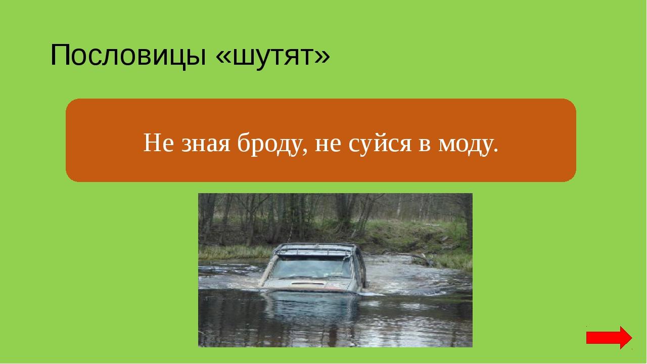 Пословицы «шутят» Не зная броду, не суйся в воду. Не зная броду, не суйся в м...