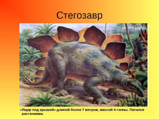 Стегозавр «Ящер под крышей» длиной более 7 метров, массой 4 тонны. Питался ра...