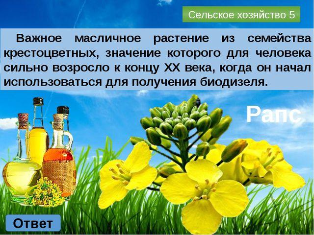Промышленность 2 Ответ Назовите завод, который занимается выпуском бытовой те...
