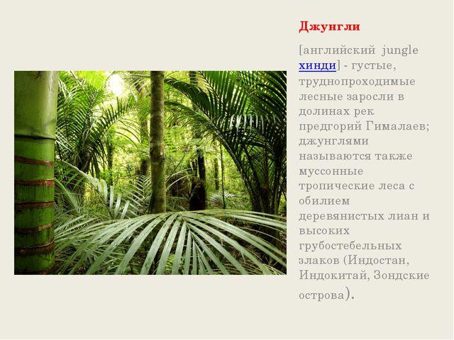 Джунгли [английский jungleхинди] - густые, труднопроходимые лесные заросли...