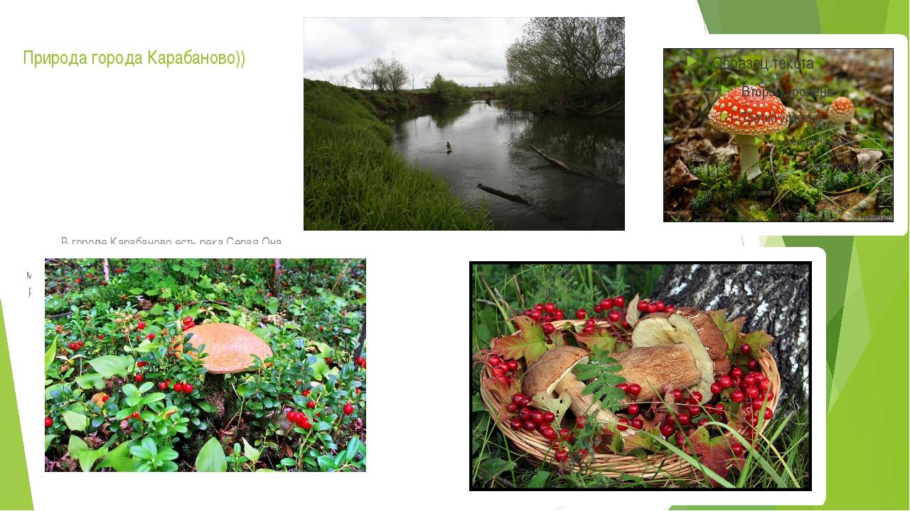 Природа города Карабаново)) В городе Карабаново есть река Серая.Она является...