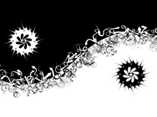 Цель проекта: Изготовить наряд в черно-белой гамме. Для достижении цели мы ре