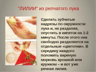 """""""ЛИЛИИ"""" из репчатого лука Сделать зубчатые надрезы по окружности лука и, не р"""