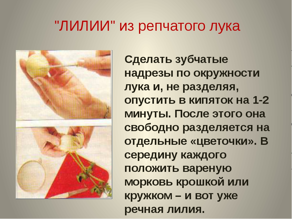 """""""ЛИЛИИ"""" из репчатого лука Сделать зубчатые надрезы по окружности лука и, не р..."""