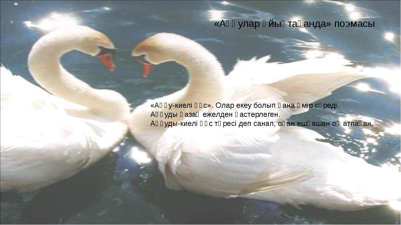 «Аққулар ұйықтағанда» поэмасы «Аққу-киелі құс». Олар екеу болып қана өмір сүр...