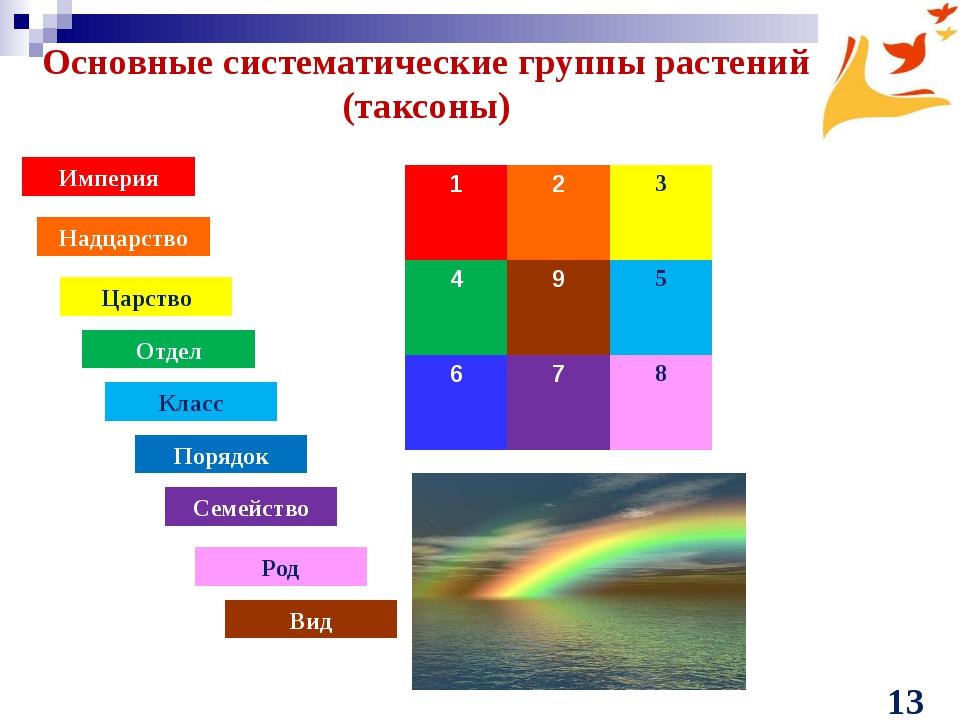 Основные систематические группы растений (таксоны) Империя Надцарство Царство...