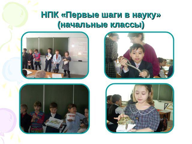 НПК «Первые шаги в науку» (начальные классы)