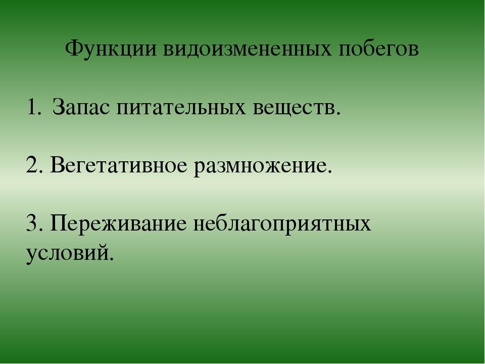 Функции видоизмененных побегов Запас питательных веществ. 2. Вегетативное раз...