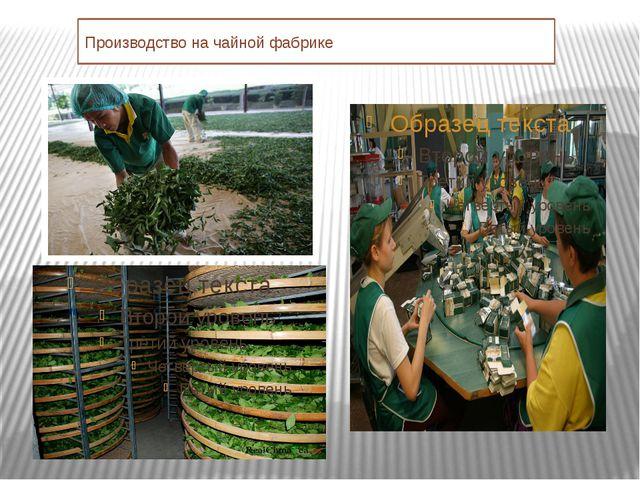 Производство на чайной фабрике