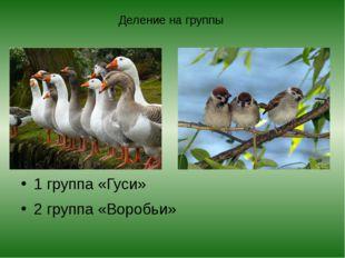 Деление на группы 1 группа «Гуси» 2 группа «Воробьи»