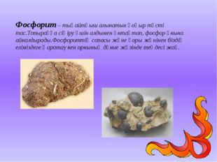 Фосфорит – тыңайтқыш алынатын қоңыр түсті тас.Топыраққа сіңіру үшін алдымен ұ