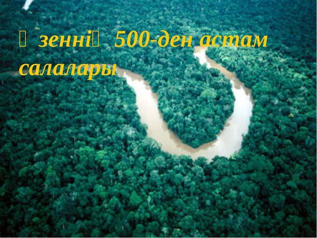 Өзеннің 500-ден астам салалары