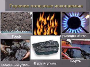 Каменный уголь Бурый уголь Торф Нефть Природный газ