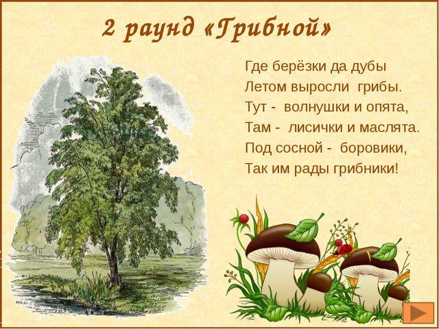 2 раунд «Грибной» Где берёзки да дубы Летом выросли грибы. Тут - волнушки и о...