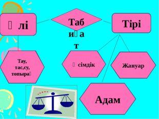 Өлі Тірі Тау, тас,су, топырақ Өсімдік Табиғат Жануар Адам