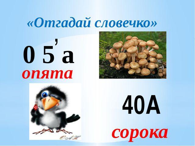 «Отгадай словечко» 0 5 а , опята 40А сорока