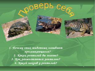 Почему этих животных называют пресмыкающиеся? Каких рептилий вы знаете? Как