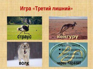 Игра «Третий лишний» страус волк червь паразит