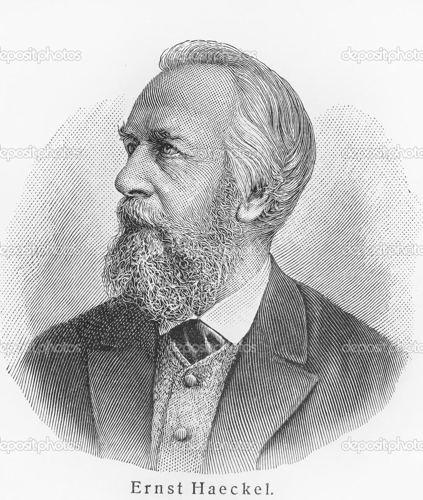 http://static8.depositphotos.com/1234724/897/i/950/depositphotos_8970189-Ernst-Haeckel.jpg