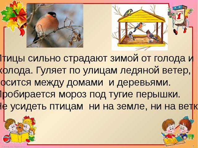 Птицы сильно страдают зимой от голода и холода. Гуляет по улицам ледяной вете...