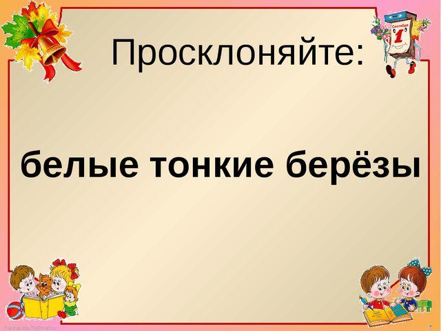 Просклоняйте: белые тонкие берёзы FokinaLida.75@mail.ru