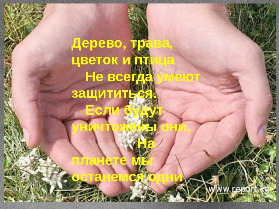 Дерево, трава, цветок и птица Не всегда умеют защититься. Если будут уничт...