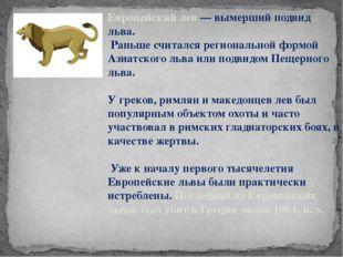 Европейский лев — вымерший подвид льва. Раньше считался региональной формой А