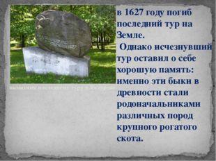 памятник последнему туру в Якторове. в 1627 году погиб последний тур на Земле