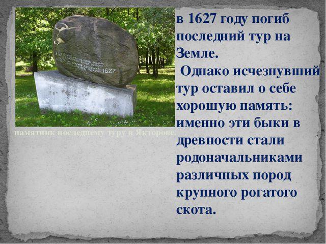 памятник последнему туру в Якторове. в 1627 году погиб последний тур на Земле...