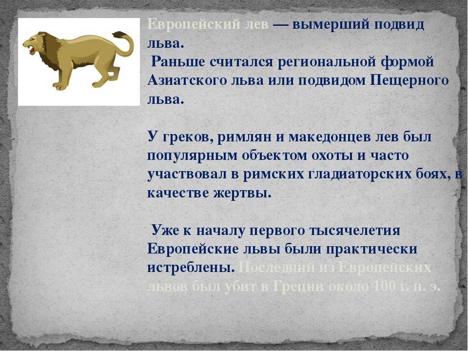 Европейский лев — вымерший подвид льва. Раньше считался региональной формой А...