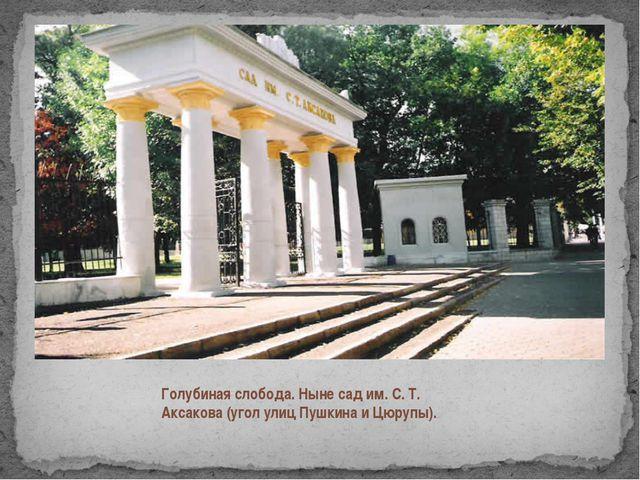 Голубиная слобода. Ныне сад им. С. Т. Аксакова (угол улиц Пушкина и Цюрупы).