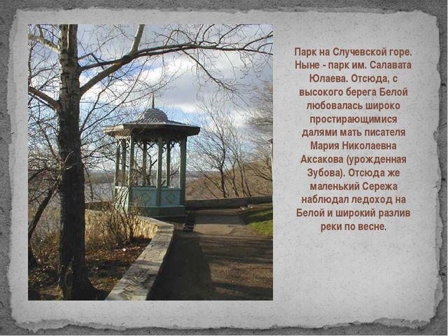 Парк на Случевской горе. Ныне - парк им. Салавата Юлаева. Отсюда, с высокого...