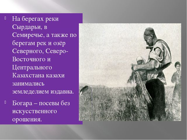 На берегах реки Сырдарьи, в Семиречье, а также по берегам рек и озёр Северног...