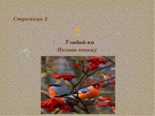 Угадай-ка Страница 2 Назови птицу 