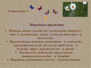Народные приметы Страница 3 Птицы вьют гнезда на солнечной стороне - это к хо