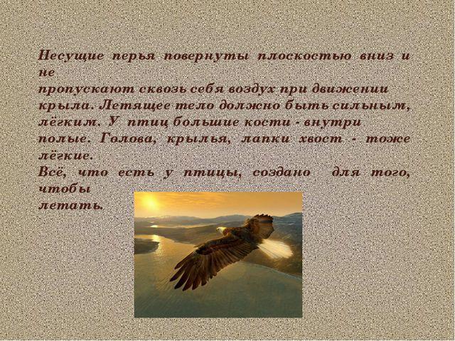 Несущие перья повернуты плоскостью вниз и не пропускают сквозь себя воздух пр...