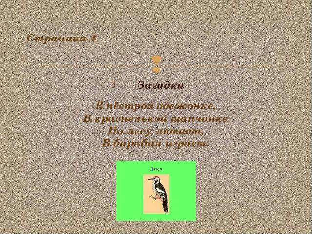 Загадки Страница 4 В пёстрой одежонке, В красненькой шапчонке По лесу летает,...