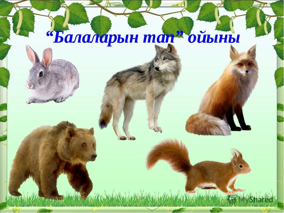 """Балаларын тап"" ойыны"