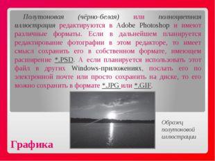 Графика Полутоновая (чёрно-белая) или полноцветная иллюстрация редактируются