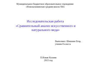 Муниципальное бюджетное образовательное учреждение «Новокаламинская средняя ш