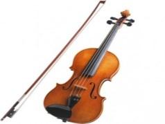 Animals Playing Violin