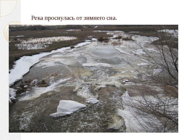 Река проснулась от зимнего сна.