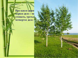 Про какое дерево и почему сказано, что у него первое дело – мир освещать, вто