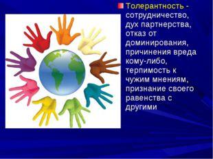 Толерантность - сотрудничество, дух партнерства, отказ от доминирования, прич